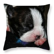 Fun To Come Throw Pillow