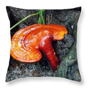 Fungi 3 Throw Pillow