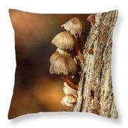 Fungi On An Old Stump Throw Pillow