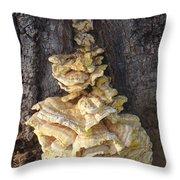 Fungi On Oak Throw Pillow