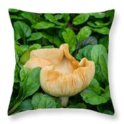 Fungus Among The Ajuga Throw Pillow