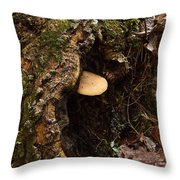 Fungus In Stump Hole Throw Pillow