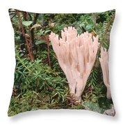 Fungus On Forest Floor Alaska Throw Pillow