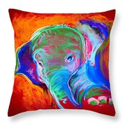 Funky Baby Elephant Blue Throw Pillow