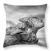 Funky Fungi Black And White Throw Pillow