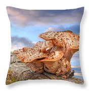 Funky Fungi Throw Pillow