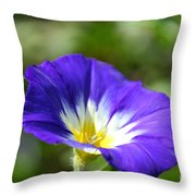 Funneling Sunshine Throw Pillow