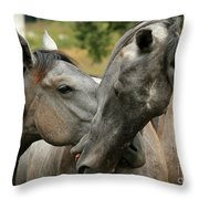 Funny Horses Throw Pillow