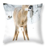 Funny Stance Throw Pillow