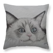 Fur Blankie Throw Pillow