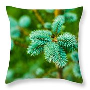 Furry Beauty - Featured 3 Throw Pillow
