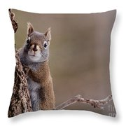Furry Ears Throw Pillow