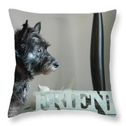 Furry Friends Throw Pillow