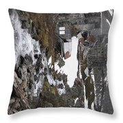 Further Up The Trail Throw Pillow