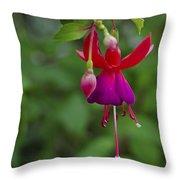 Fuschia Flower Throw Pillow by Ron White