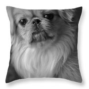 Fuzzface Throw Pillow