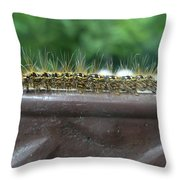 Fuzzy Caterpillar  Throw Pillow