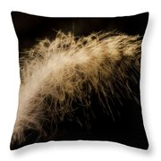 Fuzzy Feather Throw Pillow