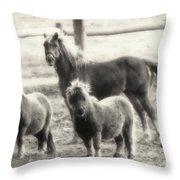 Fuzzy Ponies Throw Pillow