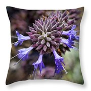 Fuzzy Purple 2 Throw Pillow