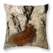Fuzzy Was He Throw Pillow
