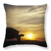 Galapagos Giant Tortoise At Sunrise Throw Pillow