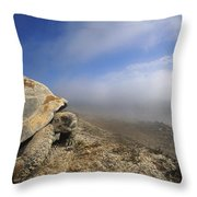 Galapagos Giant Tortoise Overlooking Throw Pillow