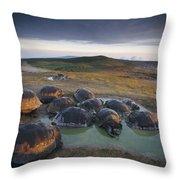 Galapagos Giant Tortoise Wallowing Throw Pillow
