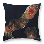 Galapagos Islands Throw Pillow