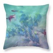 Galapagos Islands From Under Water Throw Pillow