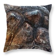 Galapagos Tortoise Shell Throw Pillow