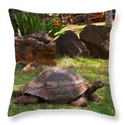 Galapagos Turtle At Honolulu Zoo Throw Pillow