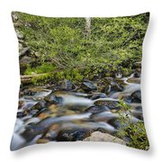 Galena Creek Throw Pillow