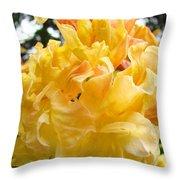 Gallery Fine Art Prints Yellow Orange Rhodies Throw Pillow