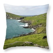 Atlantic Coast Of Ireland Throw Pillow