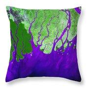 Ganges River Delta Throw Pillow