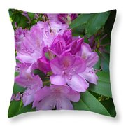 Garden Beauty Throw Pillow