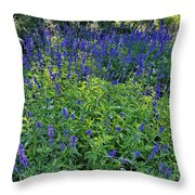 Garden Bench And Sage Throw Pillow