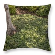 Garden Color At Woodward Park 21f Throw Pillow
