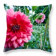 Garden Dahlia Throw Pillow