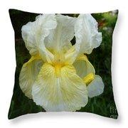 Garden Fairy Of Sunset Throw Pillow