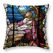 Garden Of Gethsemane Throw Pillow