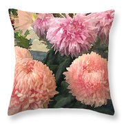Garden Of Mixed Pink Chrysanthemums Throw Pillow
