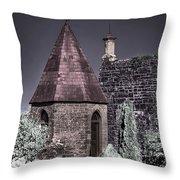 Garden Outbuilding Throw Pillow