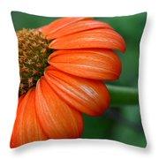 Garden Passion  Throw Pillow