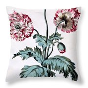 Garden Poppy With Black Seeds Throw Pillow
