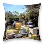 Garden Shoppe 2 At Windmill Farms Throw Pillow