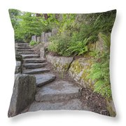 Garden Stair Steps With Natural Rocks Throw Pillow