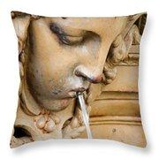 Garden Statue Of Tethys Throw Pillow
