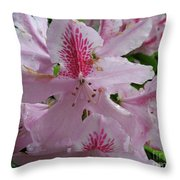 Garden Sunshine Throw Pillow
